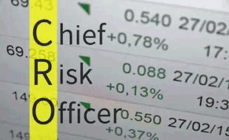 Создание и оптимизация роли CRO в Компании